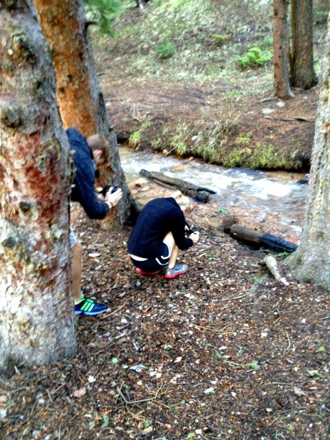 Maxwell Falls Trail Hike 03