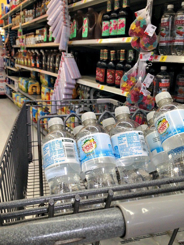 Sparkling Water, Flavored Sparkling Water, Seltzer Water, Canada Dry Sparkling Water
