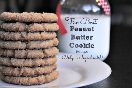 Best Peanut Butter Cookie Recipe 05