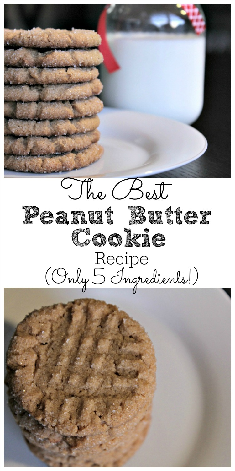 The Best Peanut Butter Cookie Recipe Only 5 Ingredients