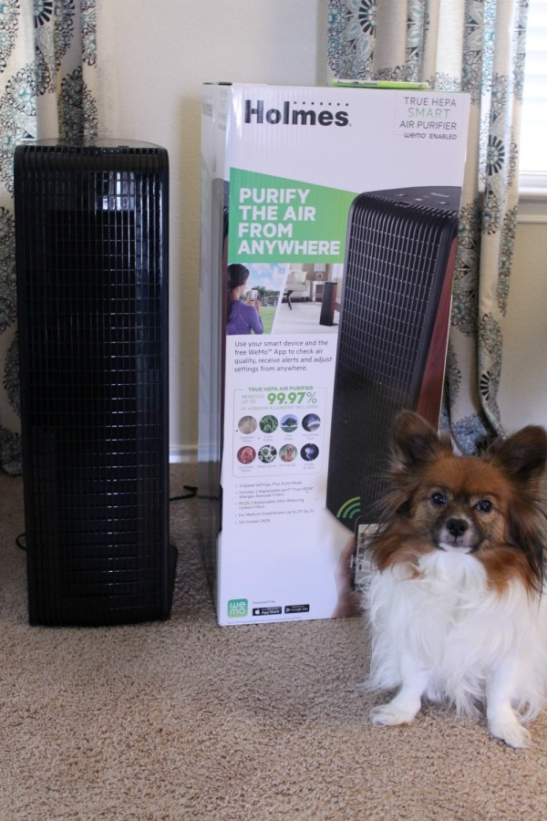Holmes smart air purifier review-01