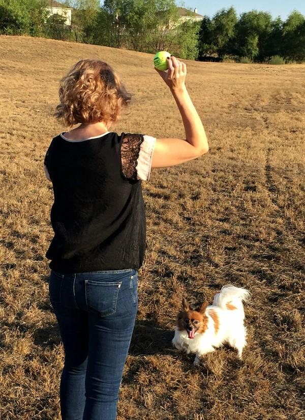 National Dog Week Beneful-03