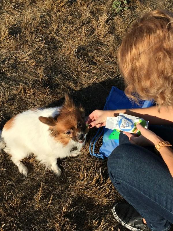 National Dog Week Beneful-07
