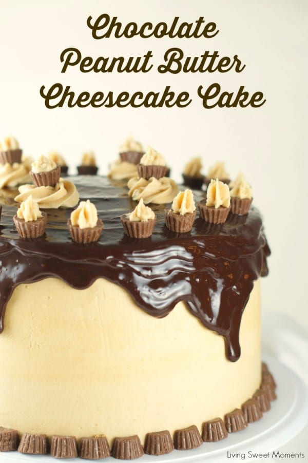 chocolate-peanut-butter-cheesecake-cake