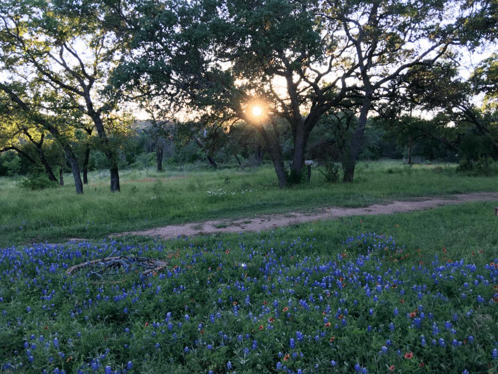 texas hillcountry sunset