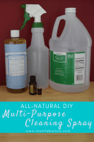 All-Natural DIY Multi-Purpose Cleaning Spray