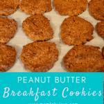 Delicious Peanut Butter Breakfast Cookies Recipe