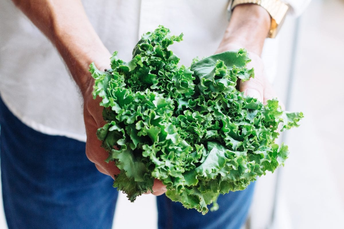 Kale Chips Recipe (Plus How You Can Get Your Family To Eat More Of This Superfood)